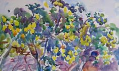 Eugenia Antipova. Quince. Watecolor on paper,  50,5х64. 1968